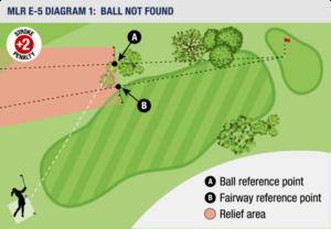 Ball ikke funnet